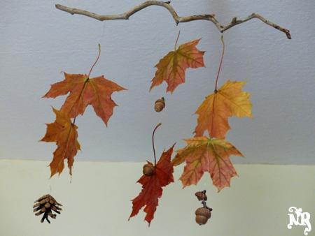 Fabulous Activité d'automne… | Tête de LiNoTh DF68